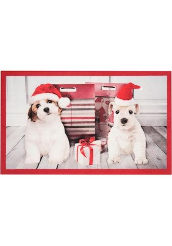 HANSE Home Fußmatte »Christmas Dogs«, rechteckig, 7 mm Höhe, Schmutzfangmatte, In- und... kaufen