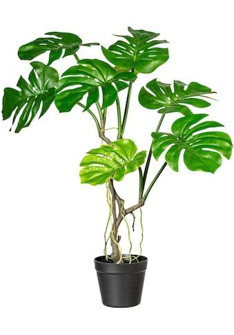 COUCH♥ Künstliche Zimmerpflanze »Blattmacher«, COUCH Lieblingsstücke kaufen