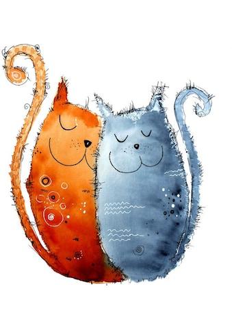 Wall-Art Wandtattoo »Lebensfreude - Verliebte Katzen« kaufen