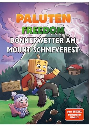 Buch »Donnerwetter am Mount Schmeverest / Paluten, Klaas Kern, Irina Zinner« kaufen