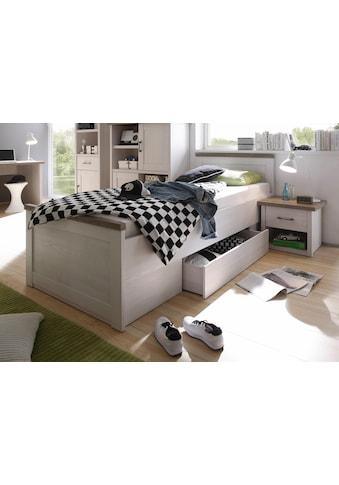 Begabino Bett »Luca« kaufen