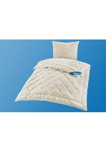 Schlafwelt Naturhaarbettdecke »Sahara«, leicht, (1 St.), hohes Wärmerückhaltevermögen,... kaufen