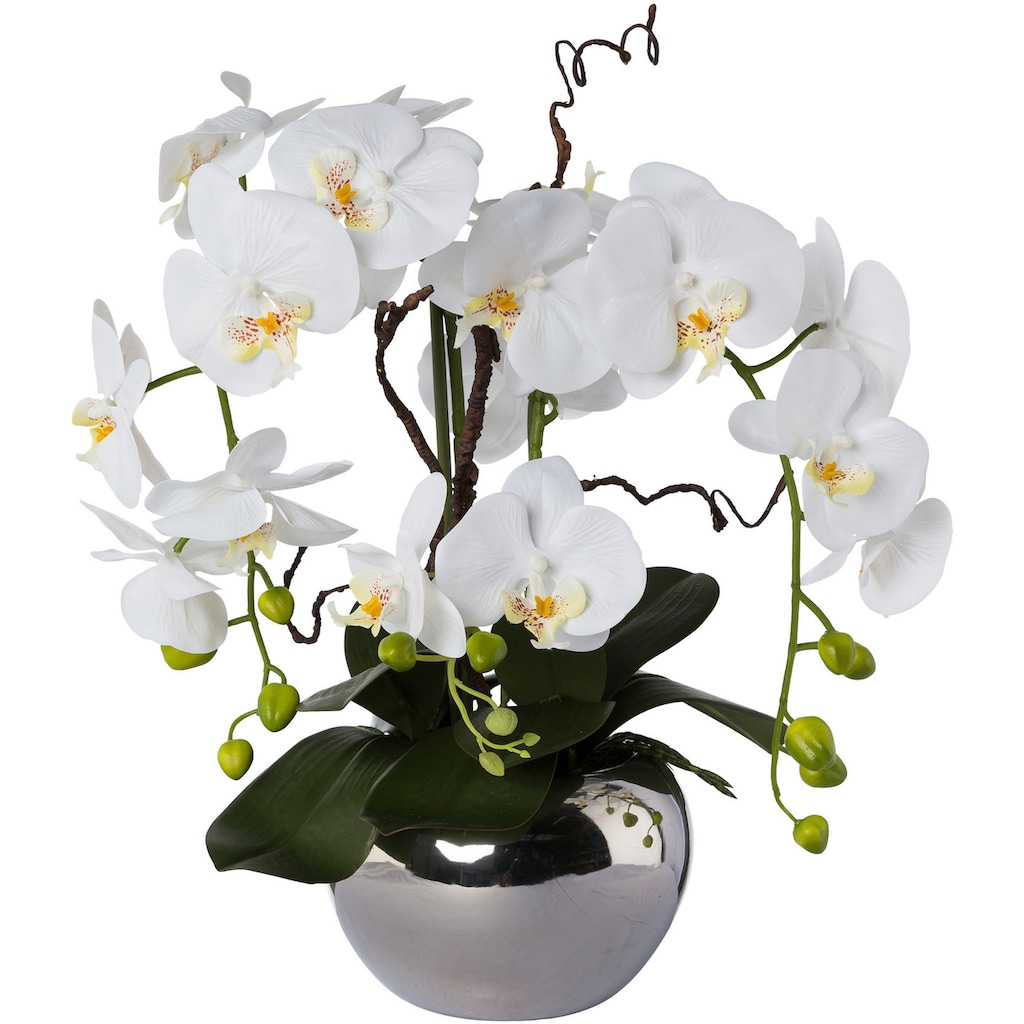 Creativ green Kunstorchidee »Phalaenopsis«, im Keramiktopf
