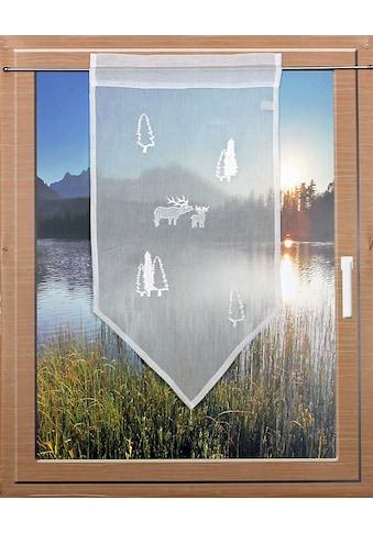 HOSSNER - ART OF HOME DECO Scheibengardine »RENTIERE«, passend zu allen Einrichtungsstilen kaufen