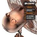 Brandson 60W Standventilator mit Dreibeinstativ & Metallgehäuse