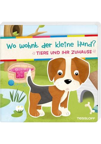 Buch »Wo wohnt der kleine Hund? Tiere und ihr Zuhause / Carmen Eisendle« kaufen