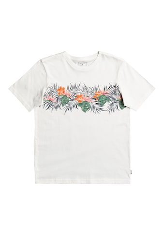 Quiksilver T-Shirt »Paradise Express« kaufen