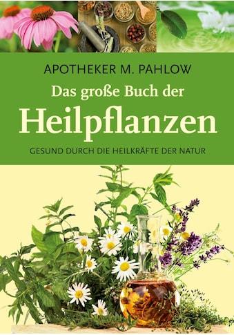 Buch »Das große Buch der Heilpflanzen / Mannfried Pahlow« kaufen