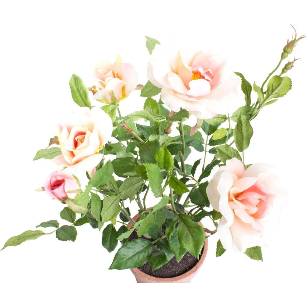 Botanic-Haus Kunstblume »Rosenstock«