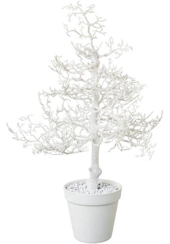 Creativ deco Kunstbaum »Hainbuche«, mit Glitter kaufen