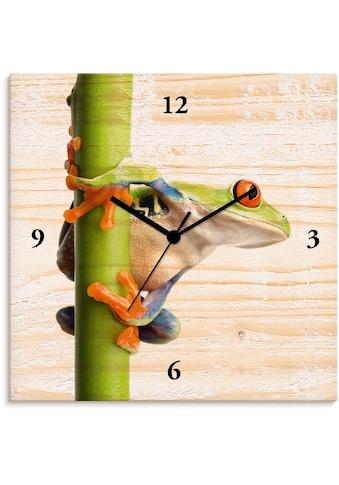 Artland Wanduhr »Frosch umfasst einen Pflanzenstengel«, lautlos, ohne Tickgeräusche,... kaufen