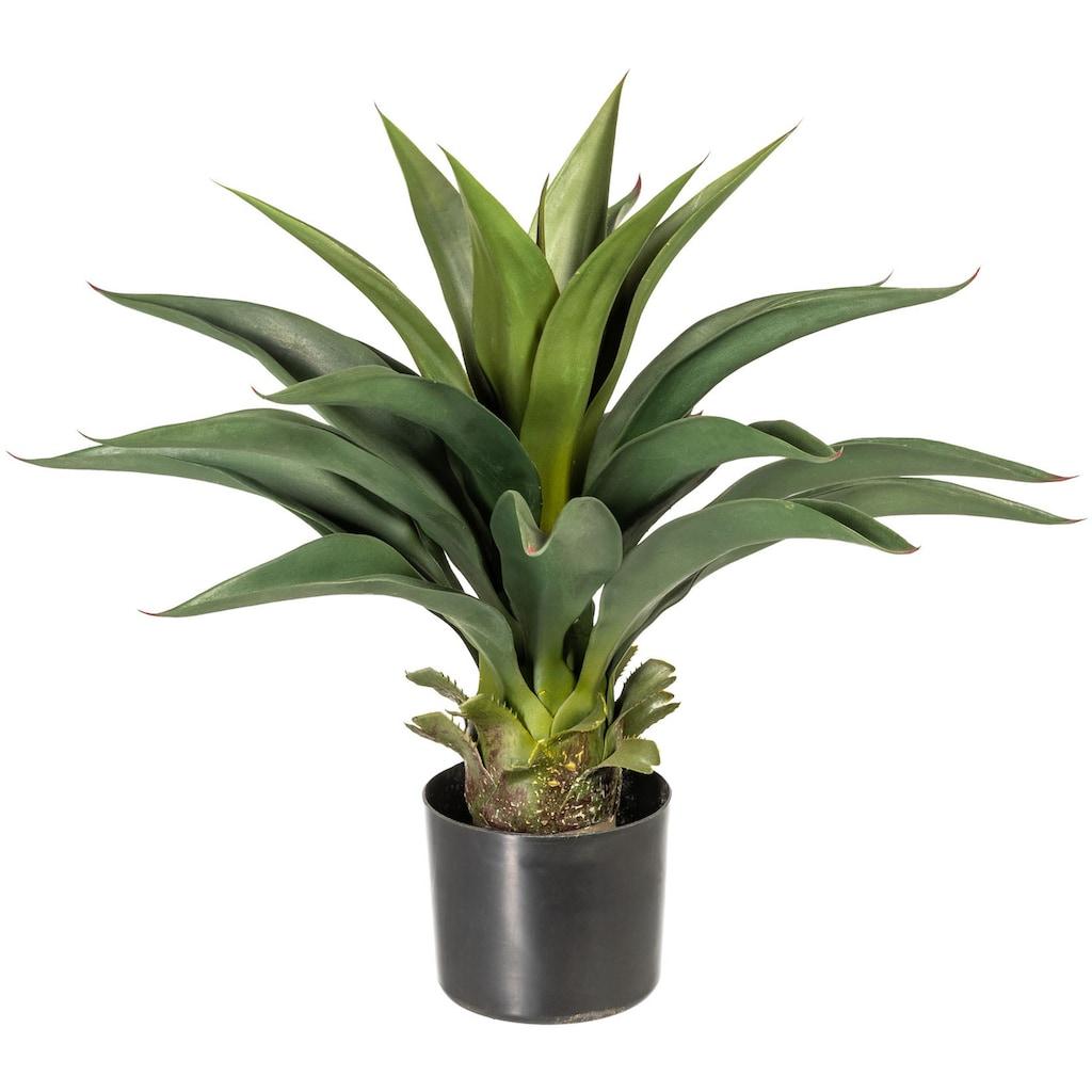 andas Künstliche Zimmerpflanze »Svala«