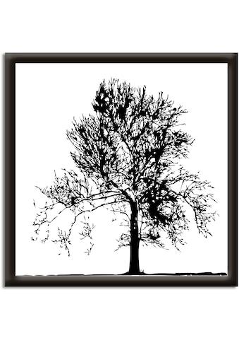 Artland Wandbild »Baum«, Bäume, (1 St.) kaufen
