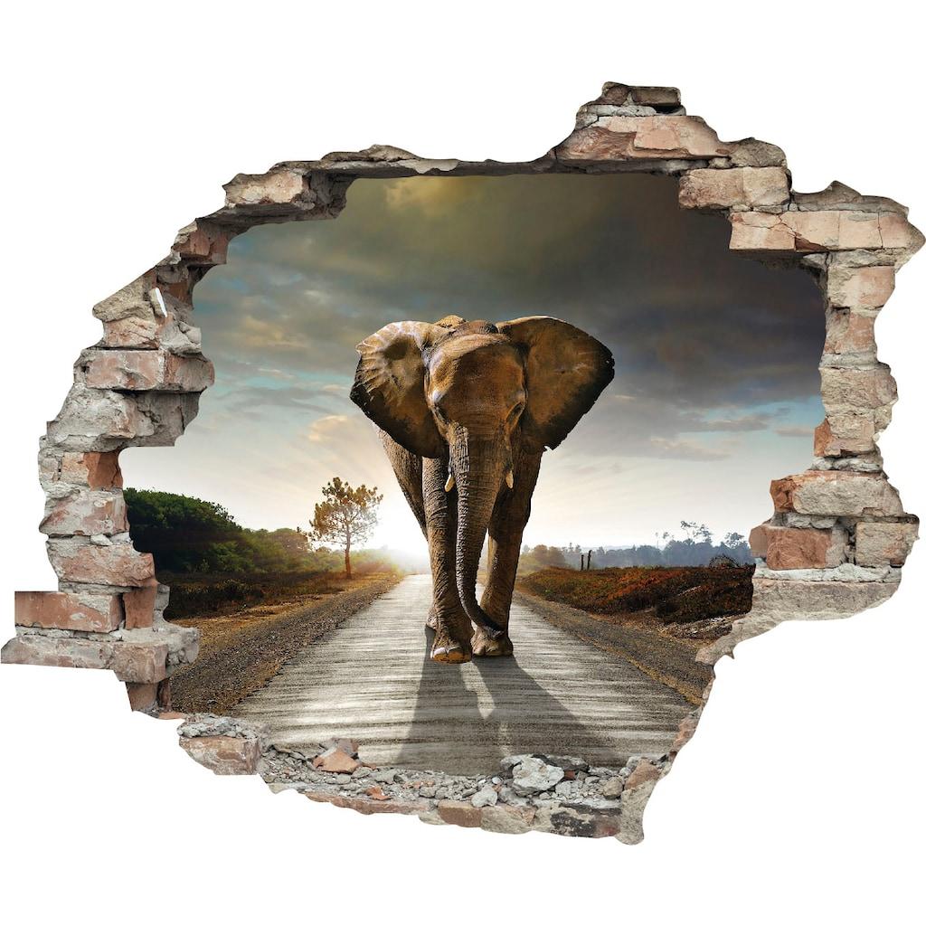 queence Wandtattoo »Elefant«
