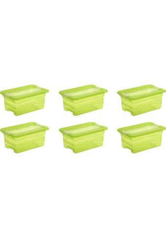 keeeper Aufbewahrungsbox »cornelia« (Set, 6 Stück) kaufen