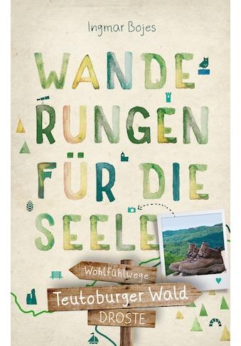 Buch »Teutoburger Wald. Wanderungen für die Seele / Ingmar Bojes« kaufen