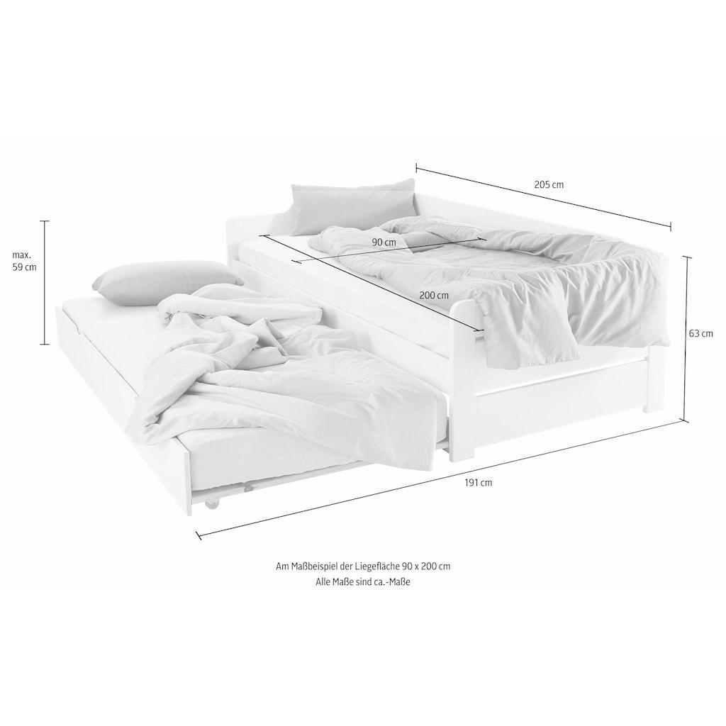 Daybett, mit 2. Schlafgelegenheit und Rollrost