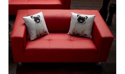 COLLECTION AB 2-Sitzer, mit 2 lustigen Hunde-Zierkissen, frei im Raum stellbar kaufen