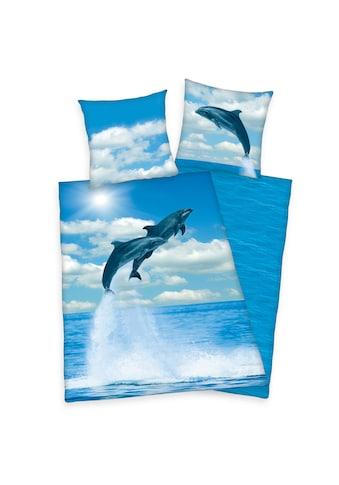 Herding Wendebettwäsche »Delfine, Baumwoll-Renforcé« kaufen