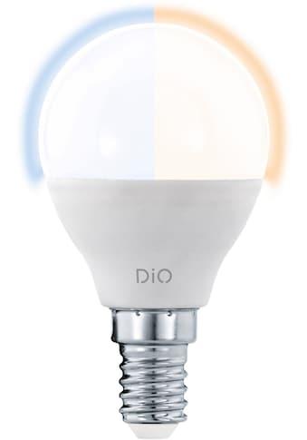 EGLO LED-Leuchtmittel »LM_LED_E14«, E14, 1 St., Warmweiß-Tageslichtweiß-Neutralweiß, CCT, Eglo Access, Fernbedienung bitte separat bestellen kaufen
