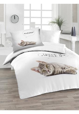 Soft Renforcé Bettwäsche, Florella, »Cat« (2tlg.) kaufen