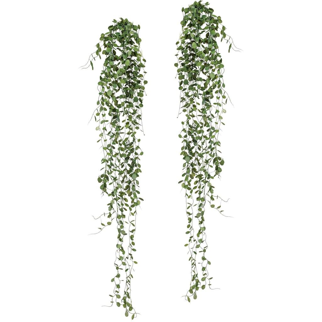 Creativ green Kunstranke »Mühlenbeckia-Hänger«, 2er Set