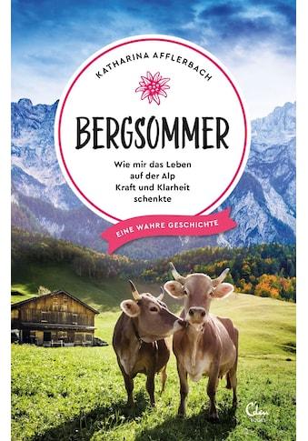 Buch »Bergsommer / Katharina Afflerbach« kaufen