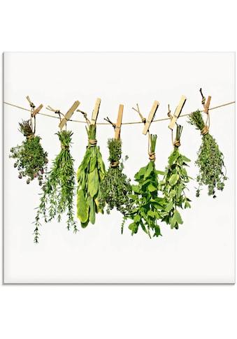 Artland Glasbild »Kräuter«, Pflanzen, (1 St.) kaufen