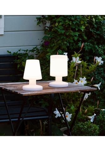 TRIO Leuchten LED Außen-Tischleuchte »LORA« kaufen