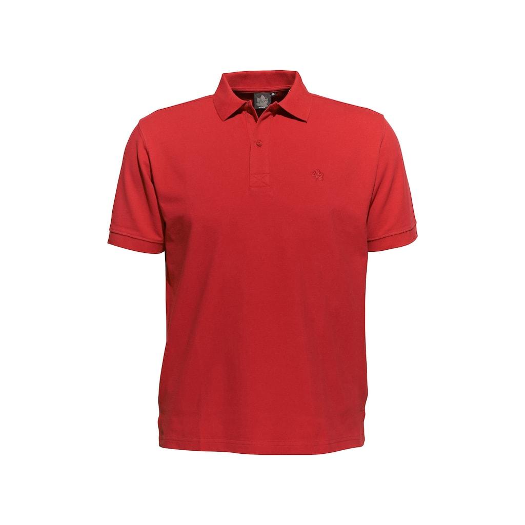 AHORN SPORTSWEAR Poloshirt in klassischem Design