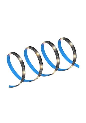 XLAYER Lichtband kaufen