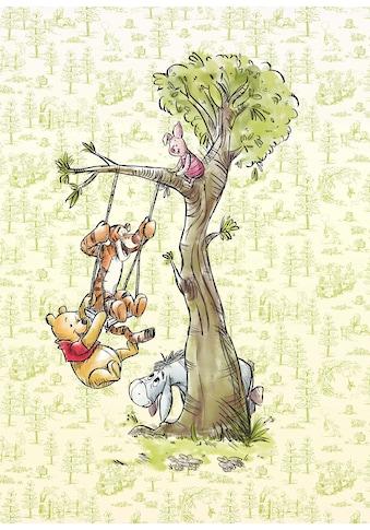 KOMAR Packung: Fototapete »Winnie Pooh in the wood«, aus Vlies kaufen
