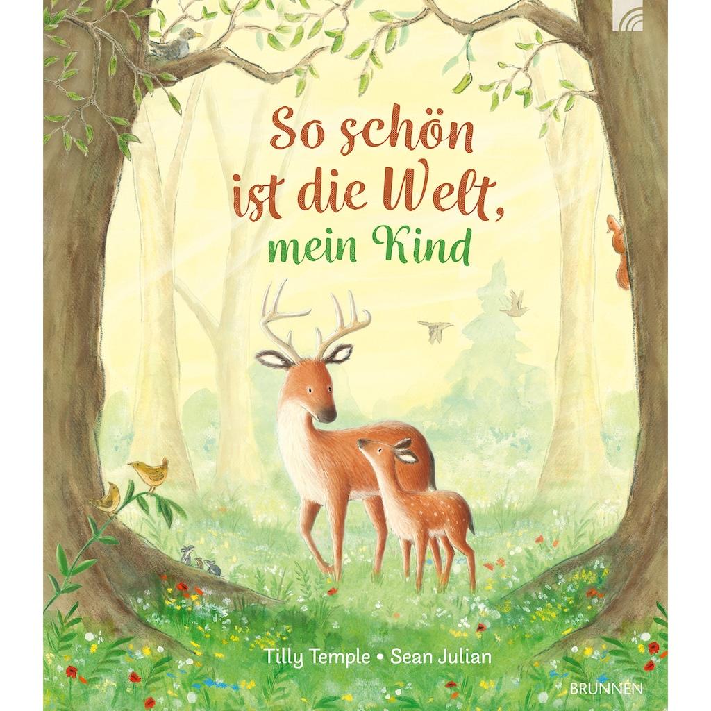 Buch »So schön ist die Welt, mein Kind / Tilly Temple, Sean Julian«