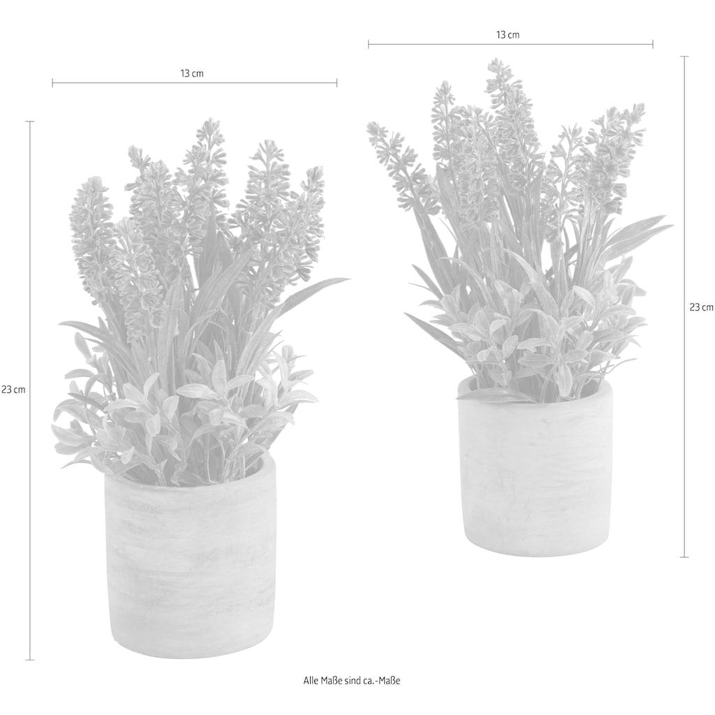 Guido Maria Kretschmer Home&Living Kunstblume »Effetamo«, 2er Set