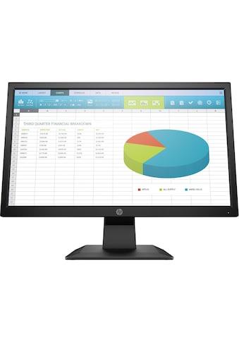 "HP P204 Monitor »49,53 cm (19,5"") HD+ Monitor, 5 ms« kaufen"