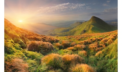 Papermoon Fototapete »Berg Sonnenaufgang«, Vliestapete, hochwertiger Digitaldruck kaufen