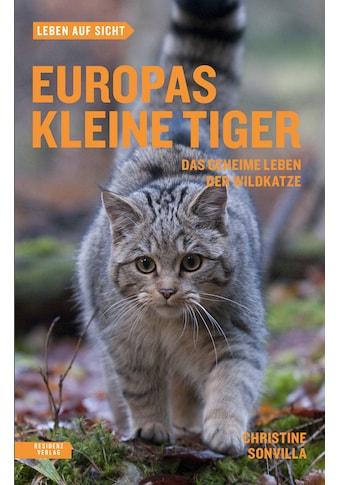 Buch »Europas kleine Tiger / Christine Sonvilla« kaufen