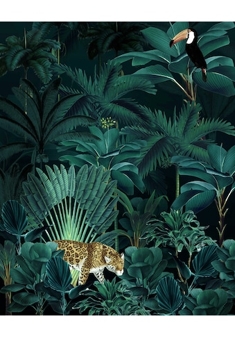 KOMAR Fototapete »Jungle Night«, Größe: 200 x 250 cm kaufen