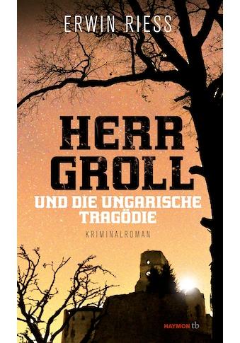 Buch »Herr Groll und die ungarische Tragödie / Erwin Riess« kaufen