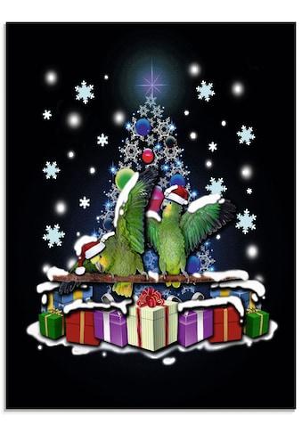 Artland Glasbild »Papageien mit Weihnachten« kaufen