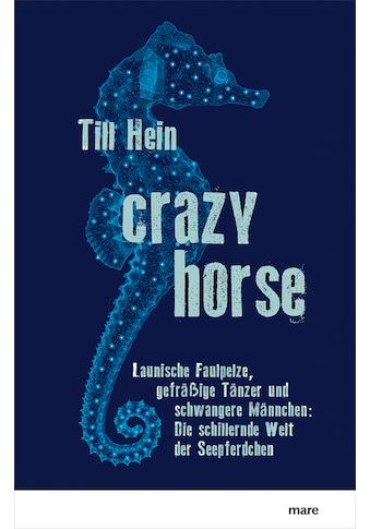 Buch »Crazy Horse / Till Hein« kaufen
