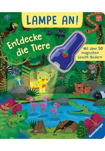 Buch »Lampe an! Entdecke die Tiere / Klara Tünner, Rachael McLean« kaufen