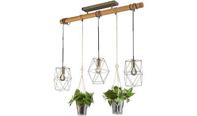 TRIO Leuchten Pendelleuchte »Plant«, E27 kaufen