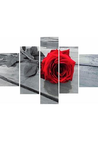 Home affaire Wandbild »RUMIN / Rose on the floor«, 2x 20/35, 2x 20/50, 1x 20/70 cm kaufen