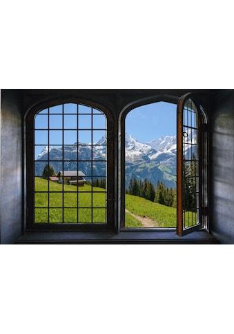 queence Wandsticker »Südtirol« kaufen