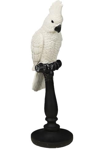 Ambiente Haus Tierfigur »Papagei Figur« kaufen