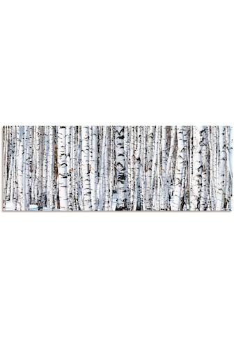 Artland Schlüsselbrett »Winterbirkenwald Wintergelassenheit« kaufen