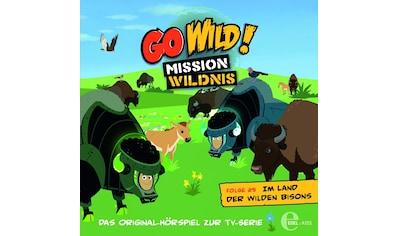 Musik - CD (25)HSP z.TV - Serie - Im Land Der Wilden Bisons / Go Wild! - Mission Wildnis, (1 CD) kaufen