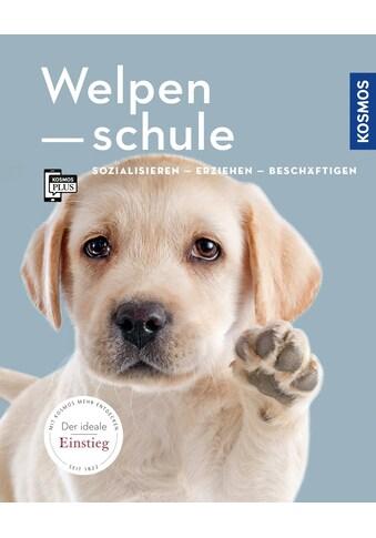 Buch »Welpenschule / Renate Jones« kaufen