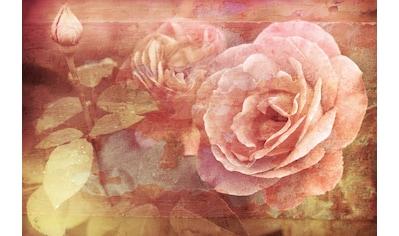 Papermoon Fototapete »Vintage Florals« kaufen